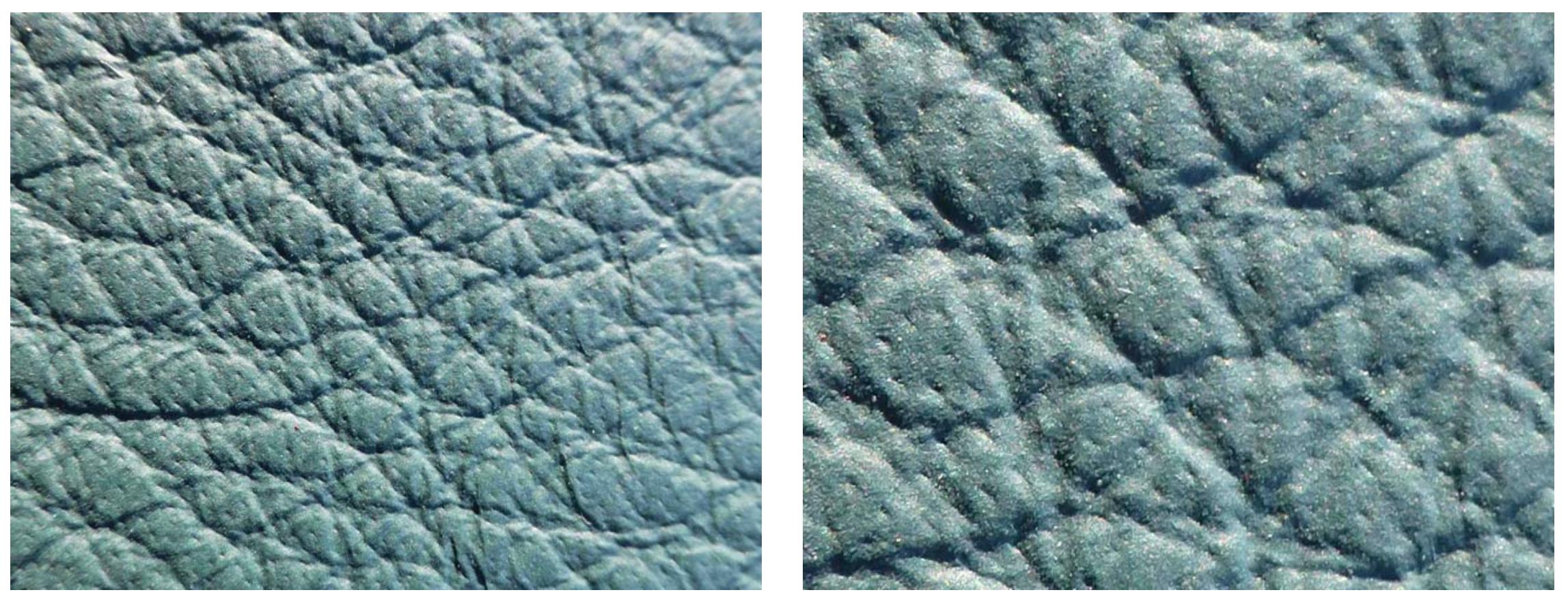 Un cuir qui est entre deux catégories, la couche de pigment est supérieure à certains cuirs semi-anilines mais inférieure à certains cuirs pigmentés. Certains pores sont encore visibles, la classification est difficile. (source colourlock)